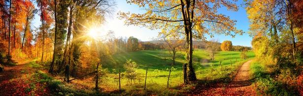 Zauberhafte Landschaft im Herbst: sonniges Panorama von lndlicher Idylle